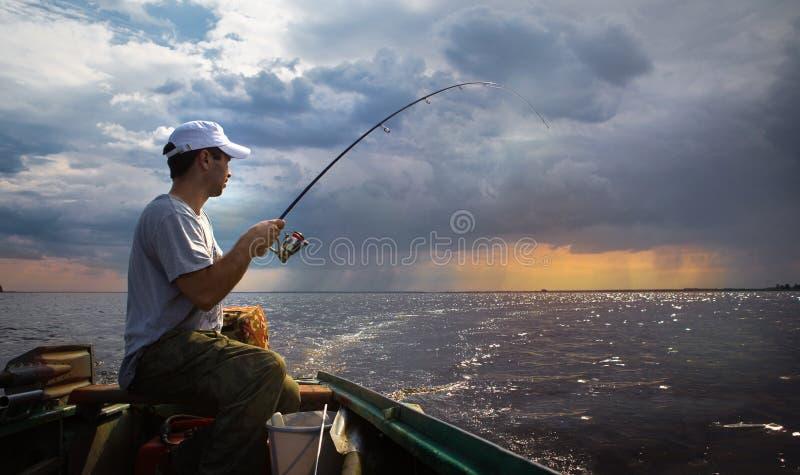 Fischenhintergrund lizenzfreie stockbilder