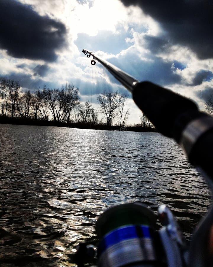 Fischenliebe lizenzfreie stockfotografie