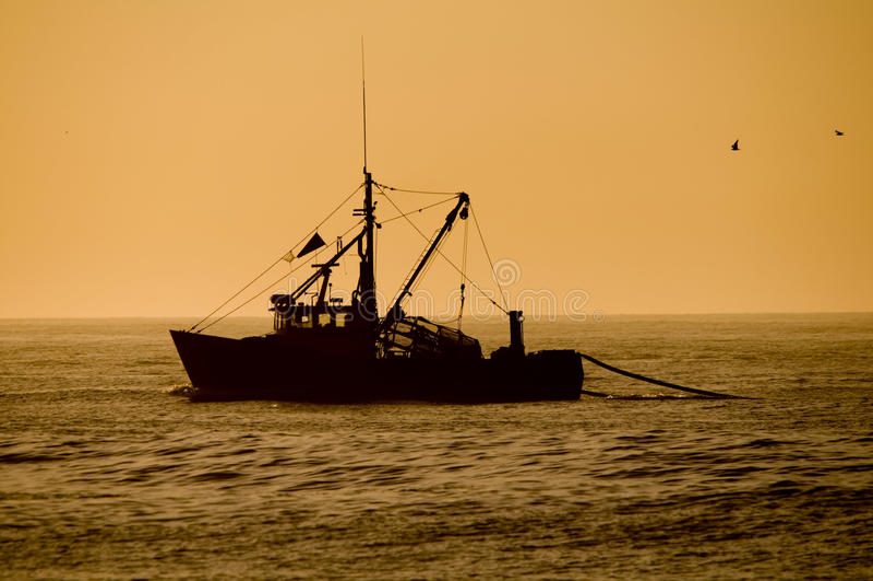 Fischenschleppnetzfischer lizenzfreies stockbild