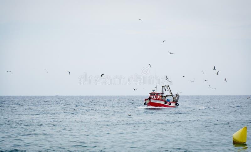 Fischenschleppnetzfischer lizenzfreie stockbilder