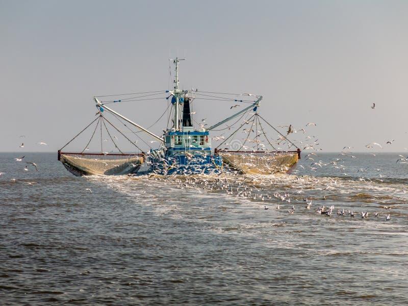 Fischenschleppnetzfischer, Holland lizenzfreie stockfotos