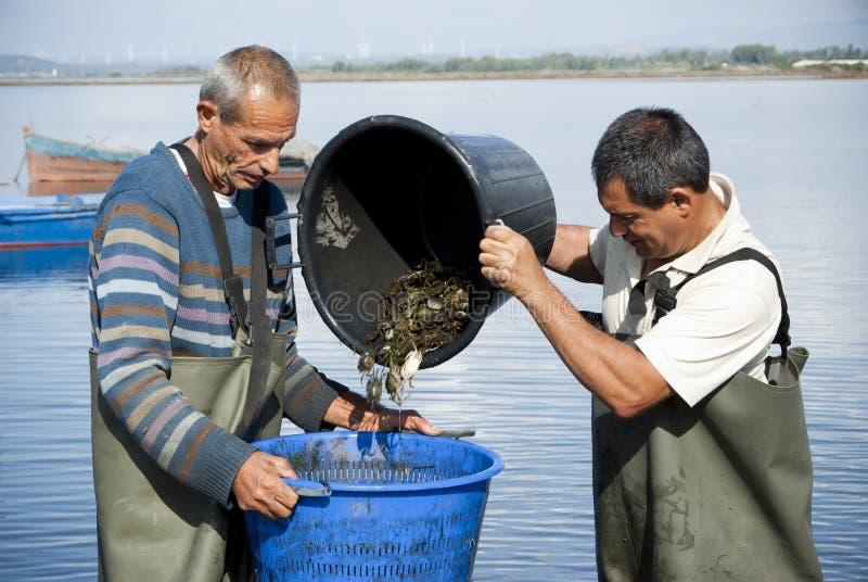 Fischer bei der Arbeit stockfoto