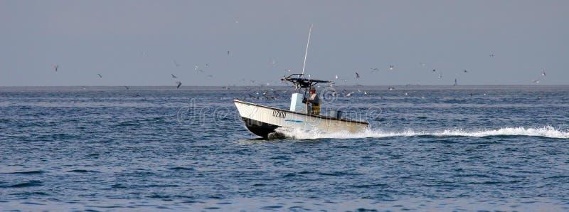 Fischer im Boot über dem Pazifischen Ozean, gesehen von Karlsbad Kalifornien stockfotografie