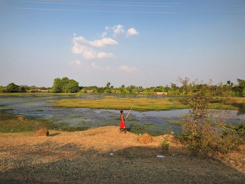 Fischer Kambodschas Siem Reap in den Mangroven mit Bambuswinkelstange lizenzfreies stockbild