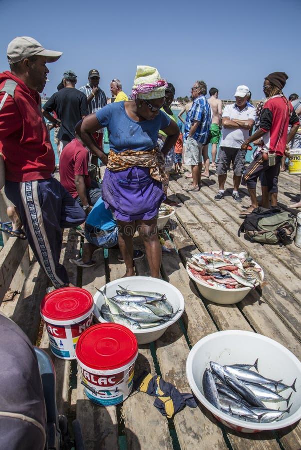 Fischer zeigen ihren Fang auf dem Pier bei Santa Maria an stockfotografie