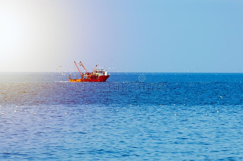 Fischerboot der roten Farbe in der hohen See, umgeben durch Vögel und durch die Sonne beleuchtet stockfotografie