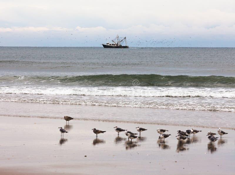 Fischerboot und Möven setzen Szene OBX NC US auf den Strand stockfoto