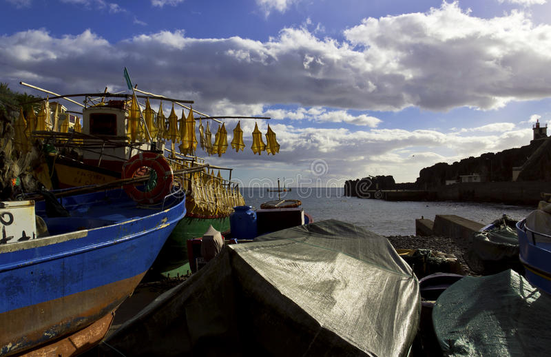 Fischerboote im Land stockbild