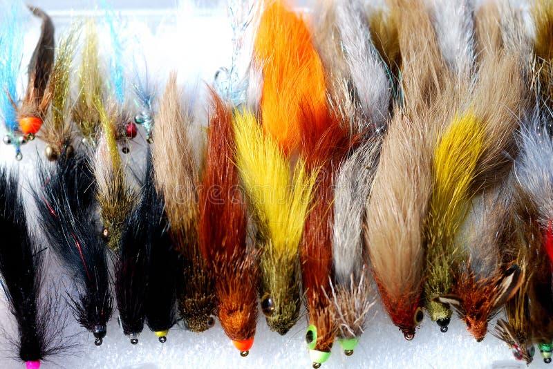 Fischerei der Fliegen stockfoto