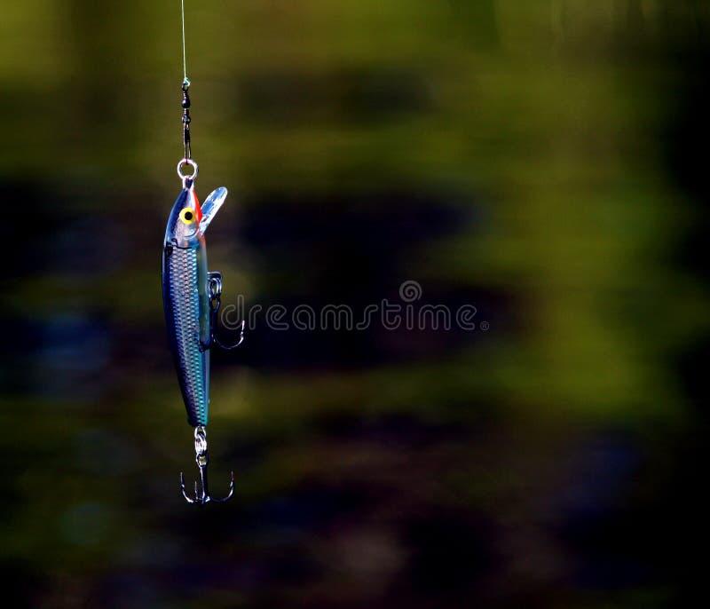 Fischerei des Köders lizenzfreie stockfotografie