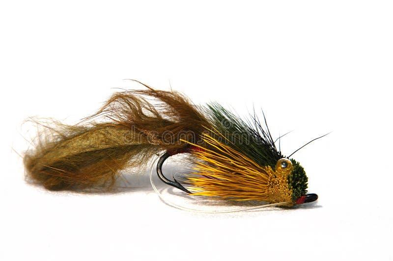 Download Fischerei des Köders stockbild. Bild von köder, gestänge - 30469