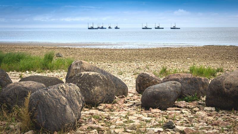Fischereiflotte stockfotografie