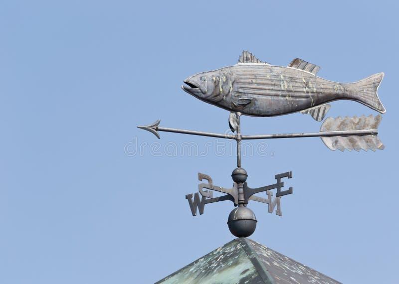 FischeWeathervane lizenzfreies stockbild
