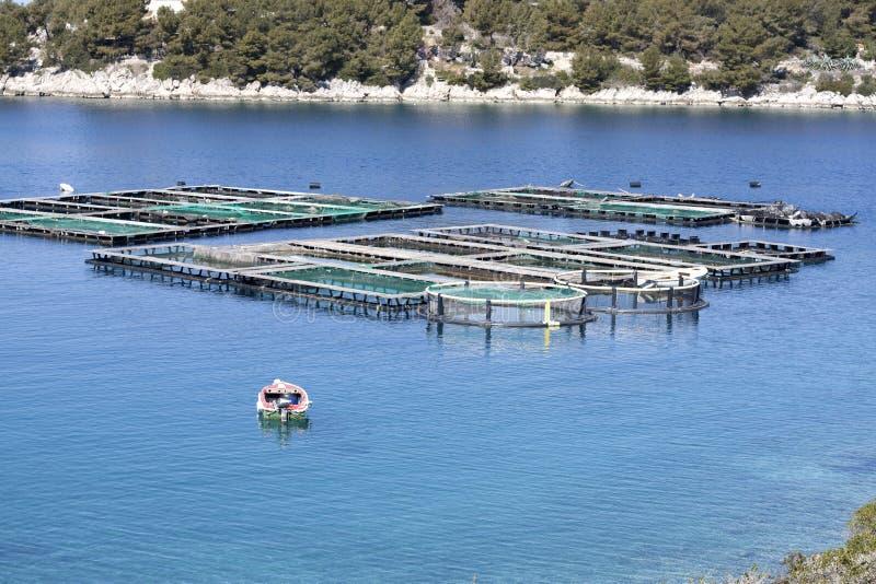 Fischfarm mit Käfigen und kleinem Boot lizenzfreies stockbild