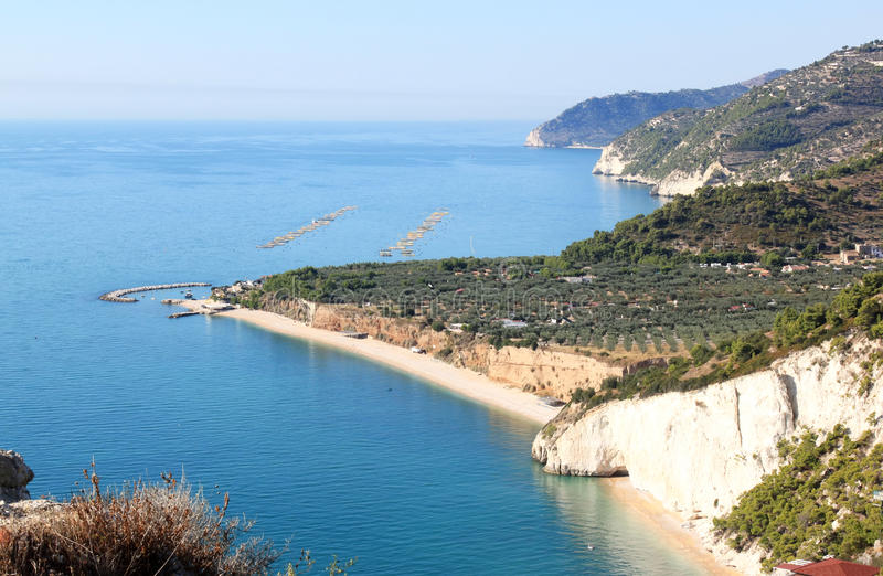Fischindustrie im adriatischen Meer, Italien stockbild