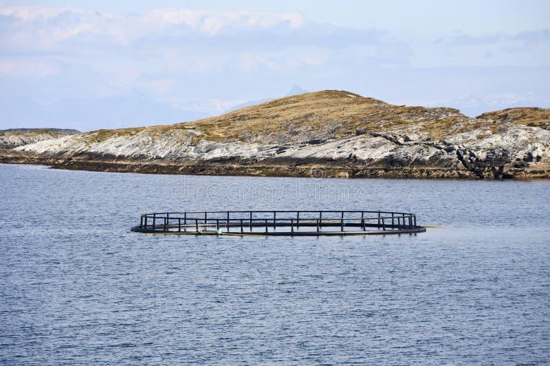 Fischkäfig stockbilder