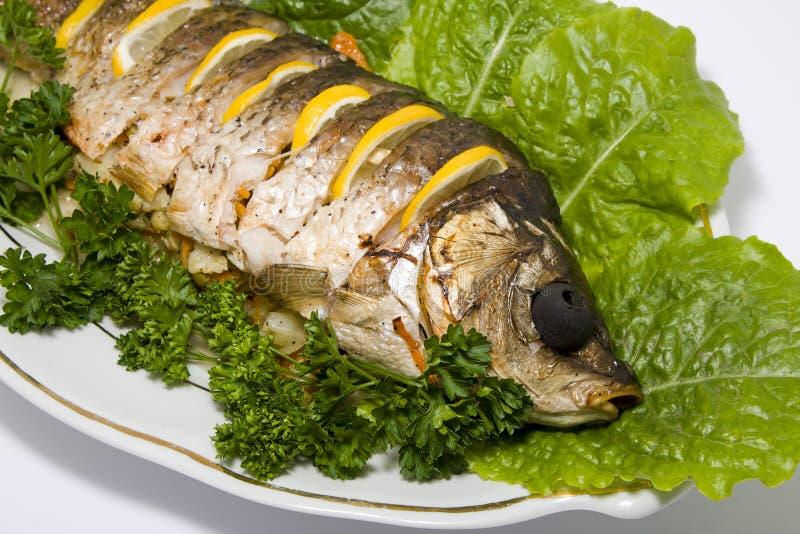 Fischkarpfen angefüllt lizenzfreies stockfoto
