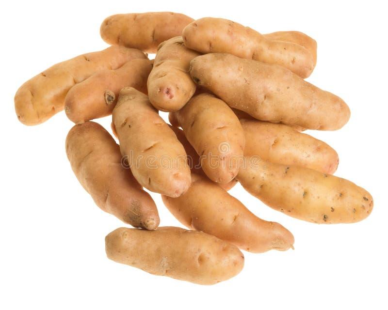 Fischkartoffeln getrennt auf Weiß stockfoto