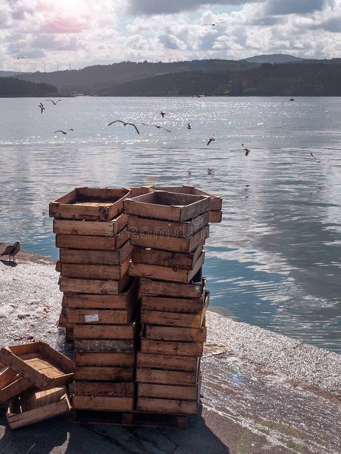Fischkisten gestapelt am Hafen lizenzfreie stockfotografie