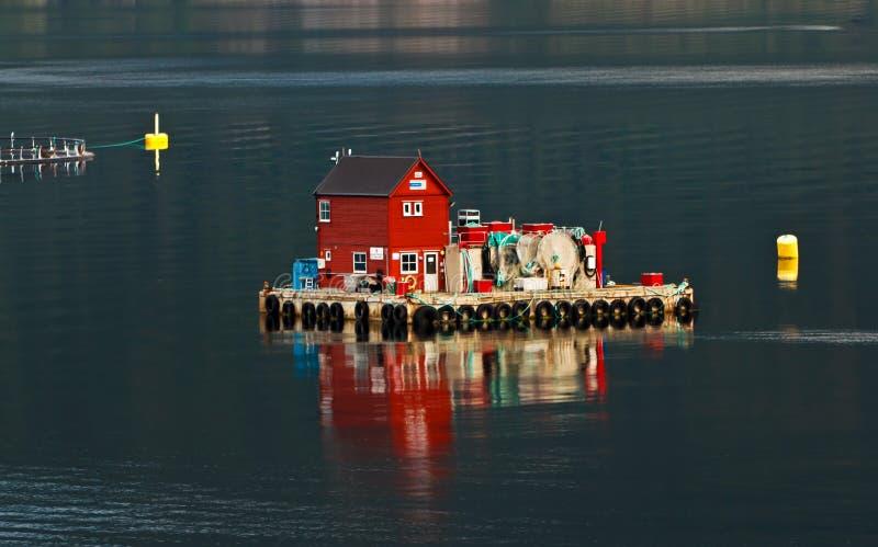Fischkultur lizenzfreie stockbilder