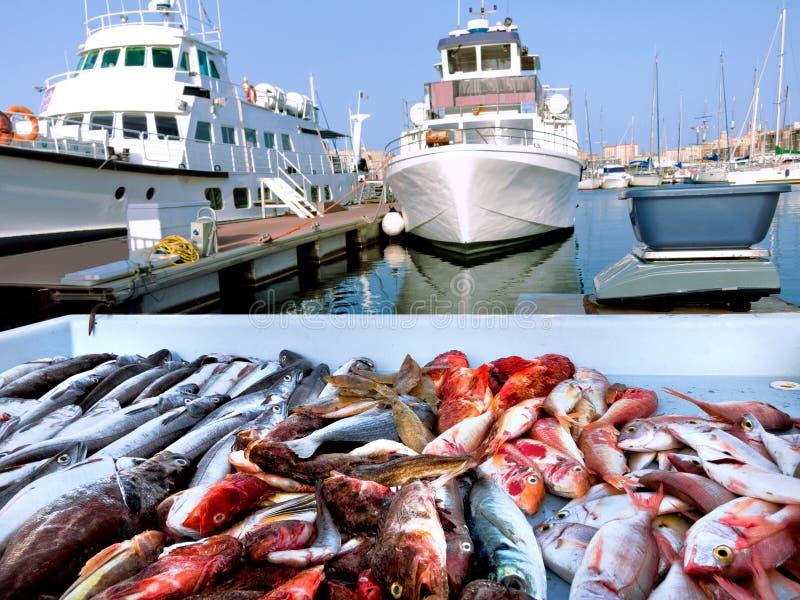 Fischmarkt im alten Kanal von Marseille. lizenzfreie stockfotos