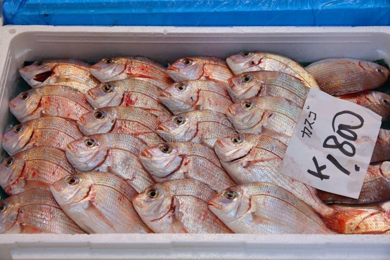 Fischmarkt in Tokyo stockfotografie