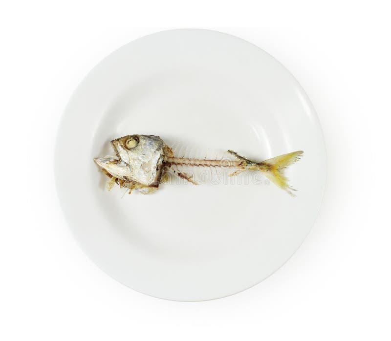 Fischskelett auf Platte stockfotos