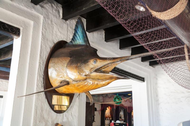 Fischspeerfisch lizenzfreies stockfoto