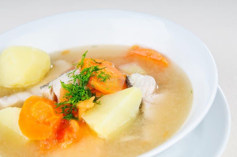 Fischsuppe lizenzfreie stockfotos