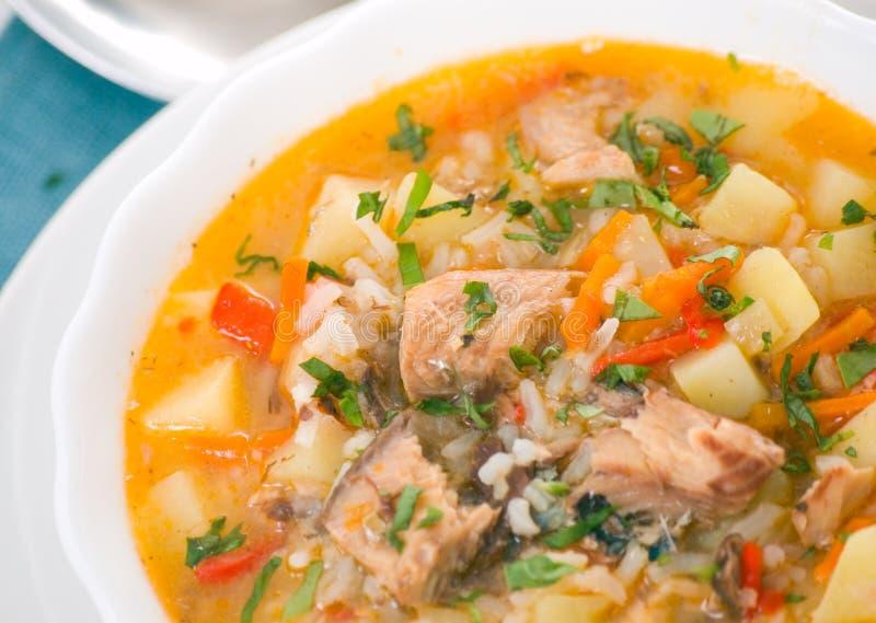 Fischsuppe lizenzfreies stockfoto