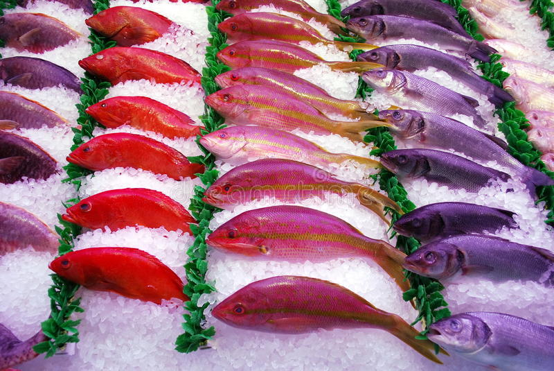 Download Fish stock image. Image of different, sale, market, colorful - 12821489