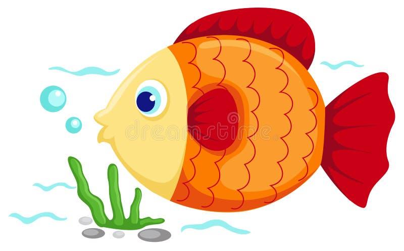 Fish royalty free illustration