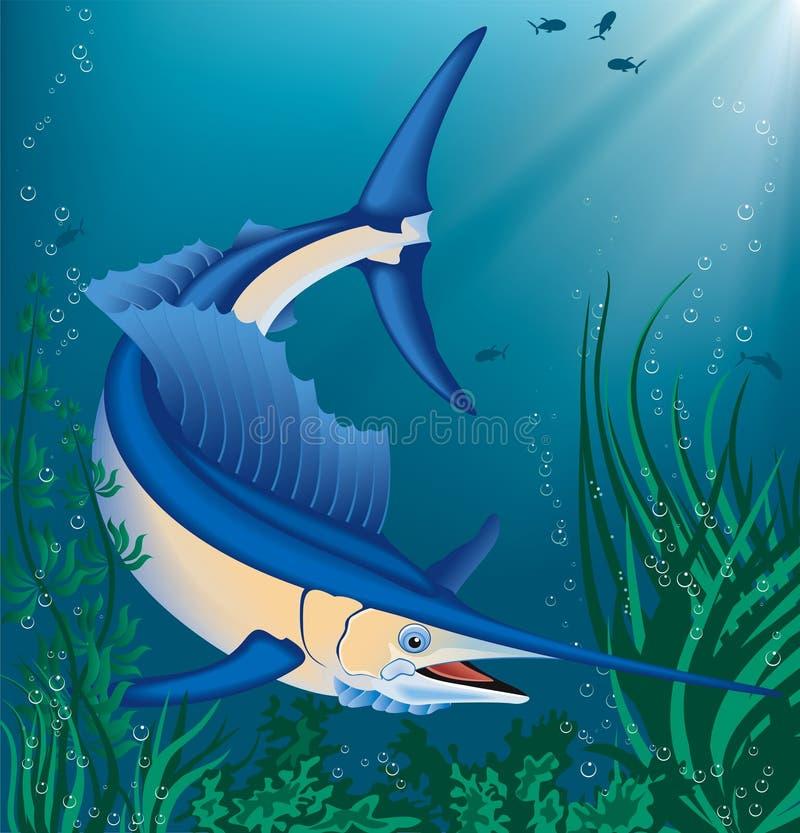 Fish Stock Photo