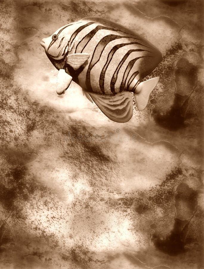 Download Fish stock illustration. Illustration of fish, illustration - 21972