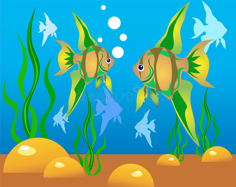 Download Fish stock vector. Image of yellow, bottom, shadow, vector - 4311675
