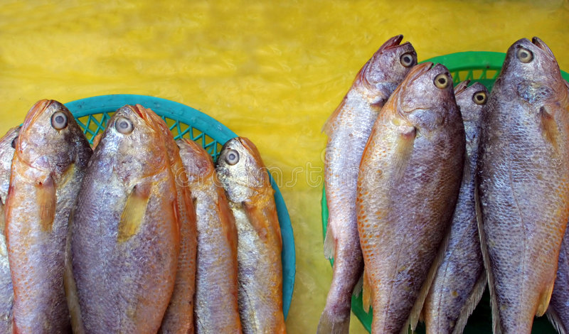 Fish. Frozen fish on ice at a market royalty free stock photo