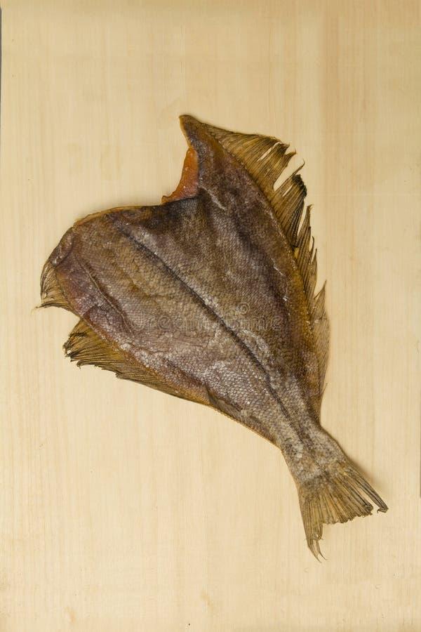 Fish1 royalty-vrije stock fotografie