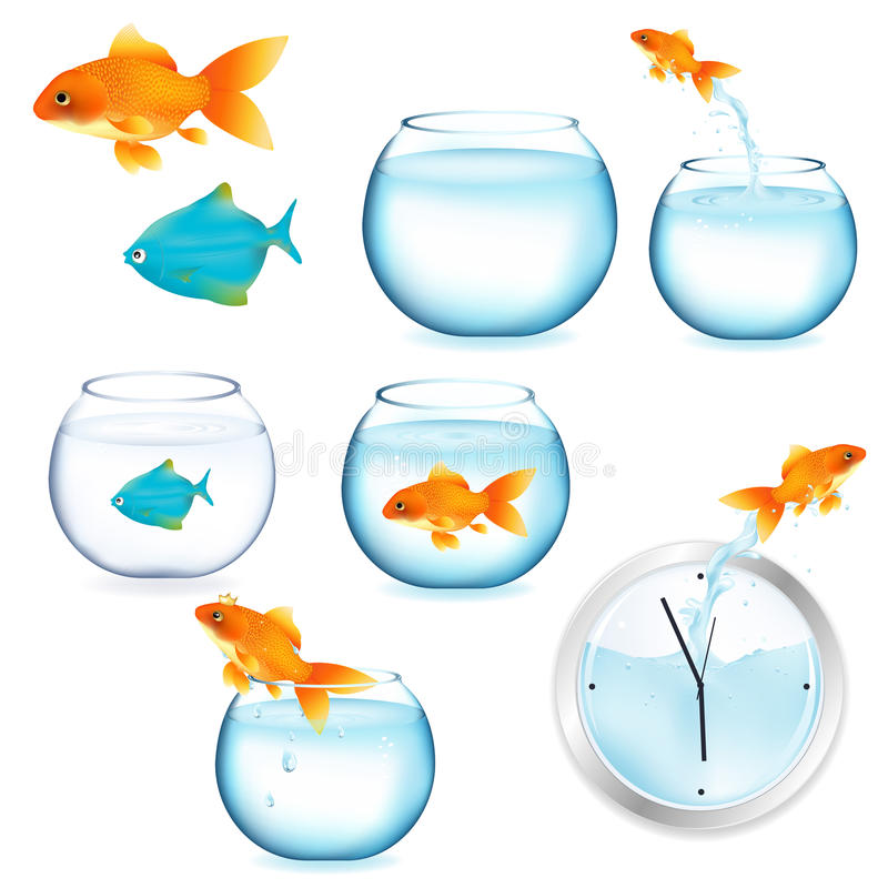 Free Fish And Aquariums. Vector Stock Images - 17888614