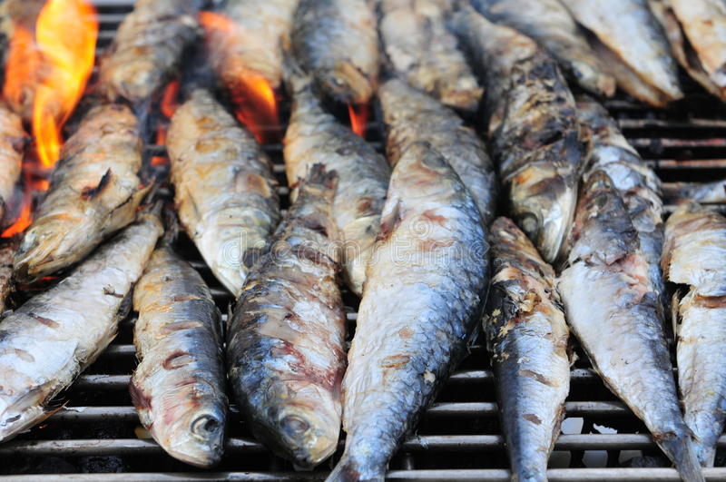 Download Fish barbecue stock photo. Image of grill, delicious - 21354088