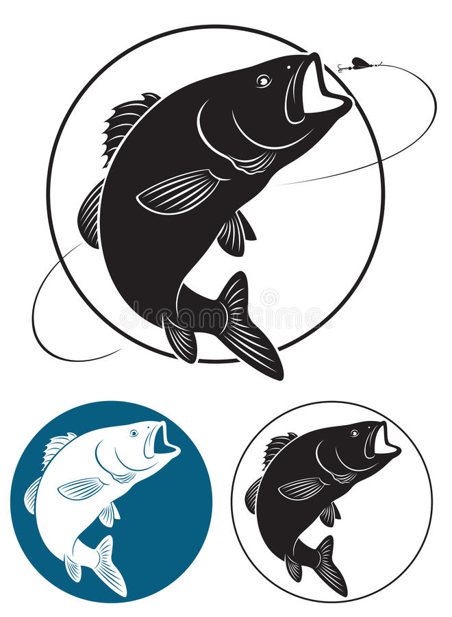 Fish bass. The figure shows fish bass royalty free illustration