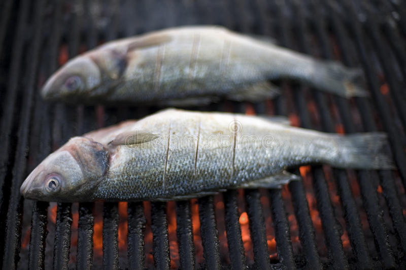 Fish BBQ Royalty Free Stock Images