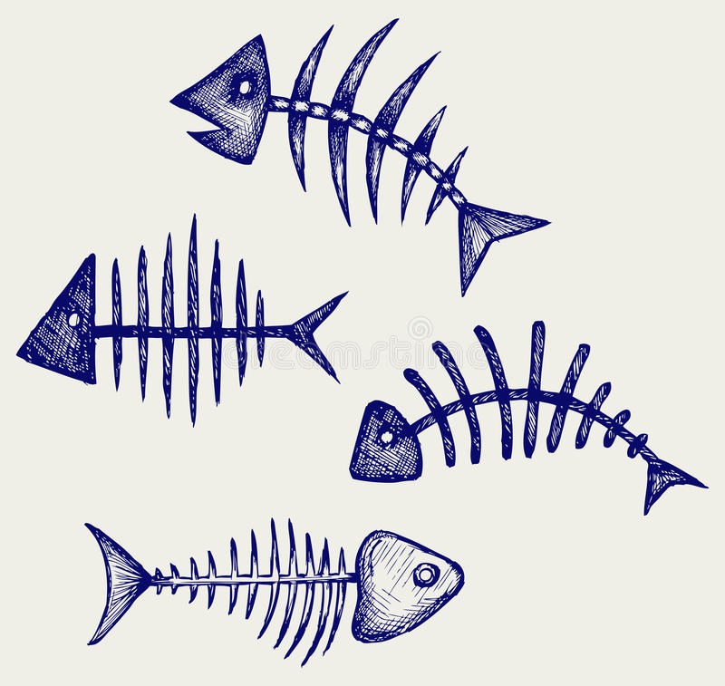 Fish bone. Doodle style. Vector stock illustration