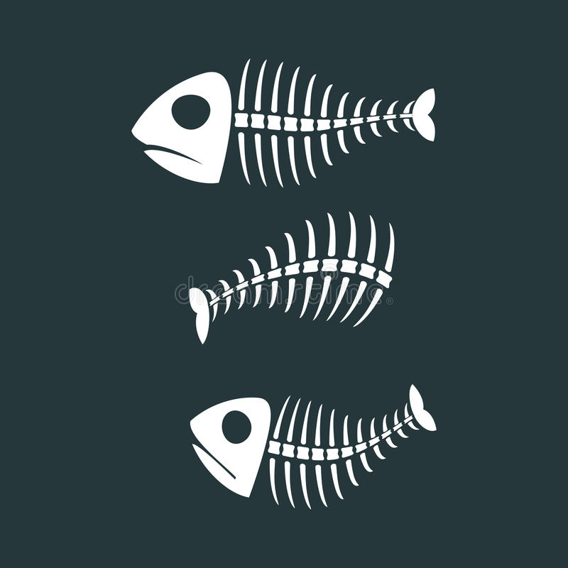 Download Fish Bones Isolated. Fishy Skeleton On White Background Stock Vector - Illustration of flat, isolated: 86932599