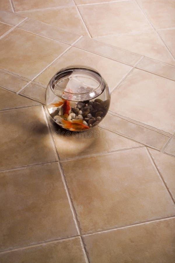 Free Fish Bowl Over Ceramic Tiles Royalty Free Stock Photo - 2777975