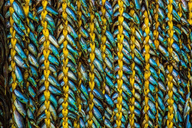 Fish braid stock photos