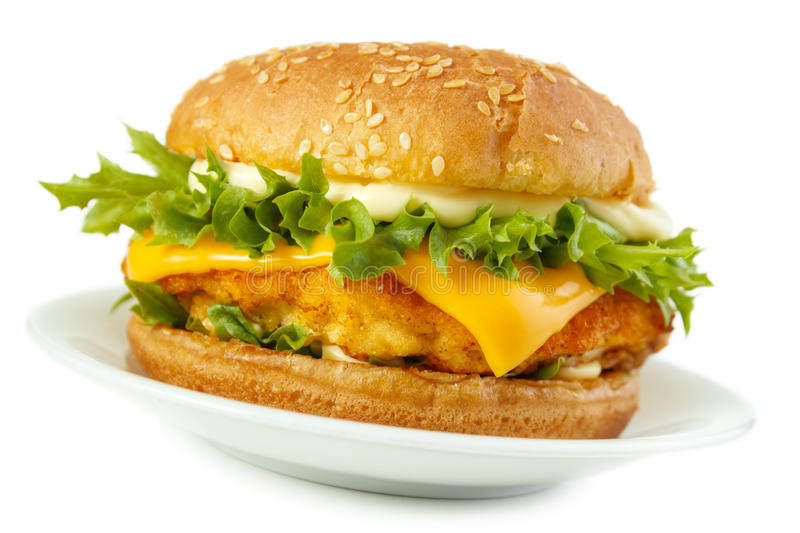 Fish burger royalty free stock photography