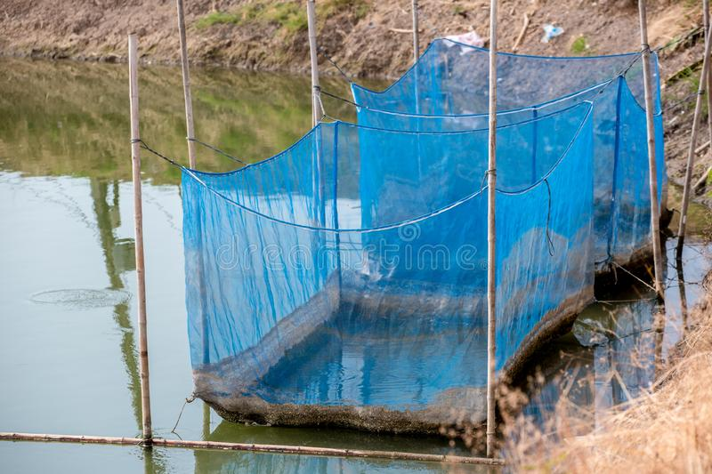 Fish cage floating in river use for raising fish, built with blue plastic barrels, iron pipes, wood planks and net. royalty free stock photos