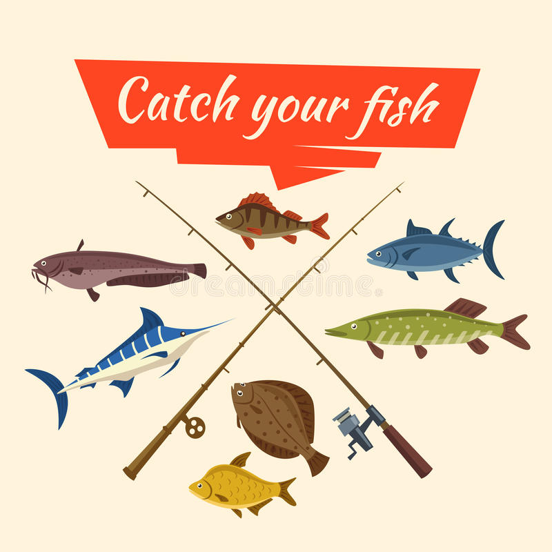 Fish catch and fisher vector tackle and rods. Fishing catch of vector fish sheatfish or catfish, marlin and perch, pike and flounder or salmon, tuna and carp royalty free illustration