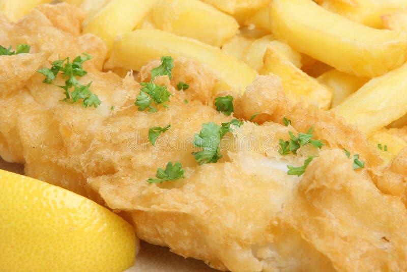 Fish & Chips stock photo