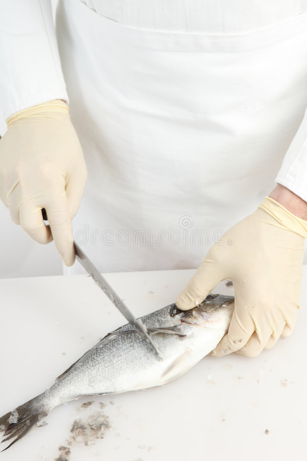 Free Fish Cleaning Stock Photos - 8735923
